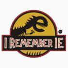 I Remember IE6 by lyadova