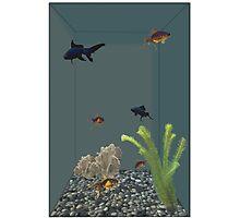 Aquarium Man Photographic Print