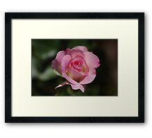 My Love to You Framed Print
