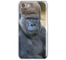 Strategist iPhone Case/Skin