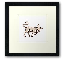 Bull Charging Side Cartoon Framed Print