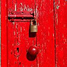 Behind the Red Door by clickedbynic