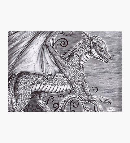 Ryu the dragon Photographic Print