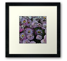 Cartoon daisies Framed Print
