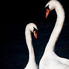 In love by Laura Melis