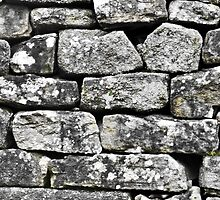 Dry Stone No.1 (1) by justicehyde