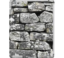Dry Stone No.1 (1) iPad Case/Skin