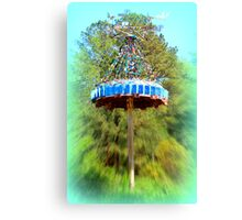 Lucama Whirligig 1 Canvas Print