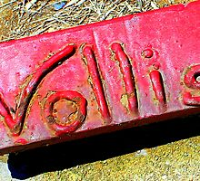 Vollis Signature in Red by Cecilia Carr