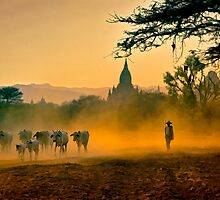 Returning From Pasture by Claude LeTien