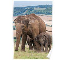 Lean on Me Little Elephant Poster