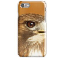 Through the Eyes of Storm iPhone Case/Skin