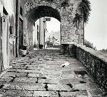 Laterina by newbeltane