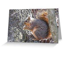 Scavenger Greeting Card