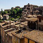 Sienese Rooftops by newbeltane