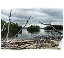 Swamp Island from Cayo Levisa Poster