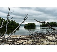 Swamp Island from Cayo Levisa Photographic Print