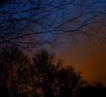 The Night of Orange Nimbus II by stansbury
