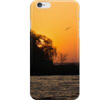 Greeting the Day in Flight  iPhone Case/Skin