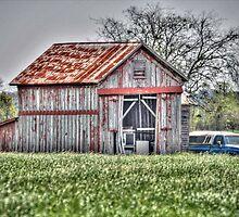 Springtime Barn by Savannah Gibbs