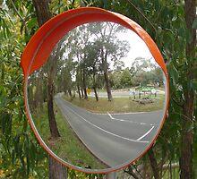 Mirror by Joan Wild