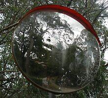 Warped Mirror by Joan Wild