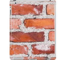 Old variable colored brick wall iPad Case/Skin