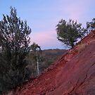 Outback Sunrise by Ellanita
