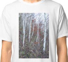A walk in December Classic T-Shirt