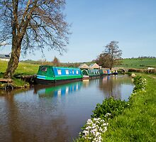 Sunny Day's Along the Canal by Heidi Stewart