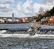 Trews Weir 2 - Exeter  by Susie Peek