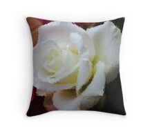 Window Glass Rose Throw Pillow