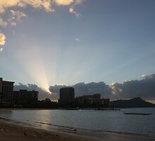 Early Birds, Famous Beach and Sun Rays - Waikiki, Honolulu, Hawaii by Georgia Mizuleva