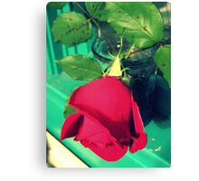 Rose in My Window Canvas Print
