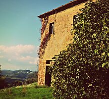 Rustic and Whimsicle Architecture in the Tuscan Countryside of Italy by jessonajourney