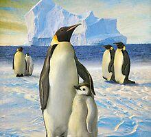 antarctic coast penguins by R Christopher  Vest