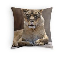 It's better to live one day as a lion, than a hundred as a sheep. Throw Pillow