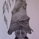 Bats are Beautiful by Lorraine  Stern