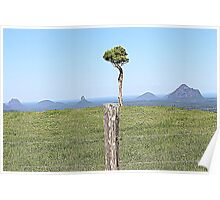 glasshouse mountains queensland australia Poster