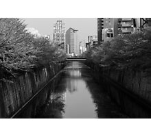 Japan Sakura - Nakameguro Cherry Blossom Photographic Print