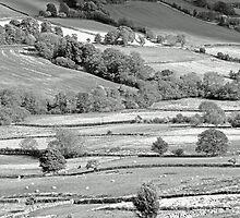 North Yorkshire Moors #3 by Graham Geldard