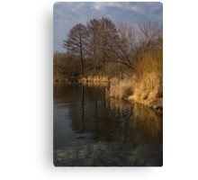 Golden Afternoon Reflections Canvas Print