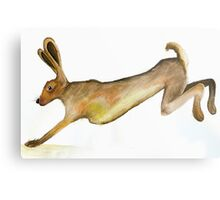 Hare Leaping Metal Print