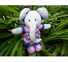 I'm an Elephant get me out of here Photographic Print