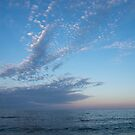 Pale Blues and Feathery Clouds in the Fading Light by Georgia Mizuleva