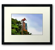 Galapagos Brown Pelican On The Lookout Framed Print