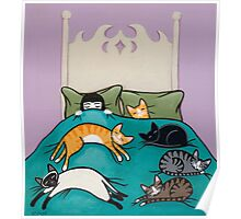 Bed Time with Cats Poster