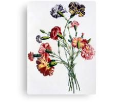 Bouquet of Carnations Canvas Print