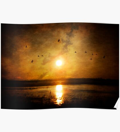 Sunrise By The Lake  Poster