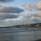SCRIPPS PIER LA JOLLA by fsmitchellphoto
